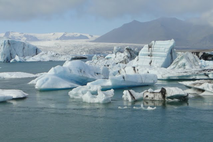 bay full of icebergs with glacier in the background in iceland